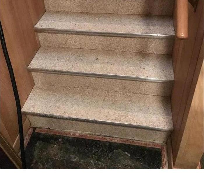 basement stairs dried